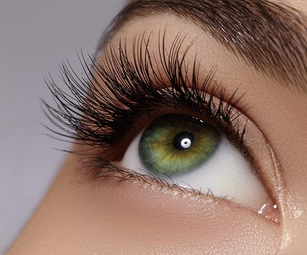 Kraftvoll, schön, verführerisch – voluminöse Wimpern sind das Sinnbild weiblichen Temperaments.